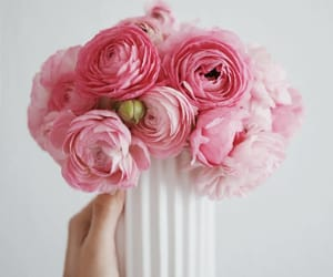 bouquet, floral design, and flowers image