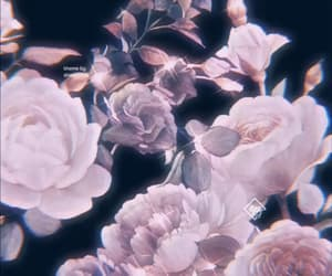 aesthetic, floral, and icon image