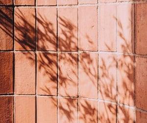 aesthetics, peach, and shadow image