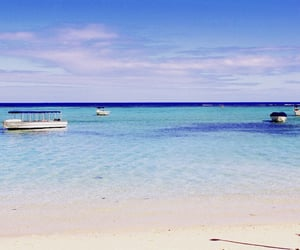 blue, summer, and mauritius image