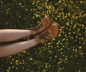 legs, paisaje, and prado image