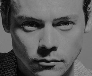 black and white, Harry Styles, and one direction image