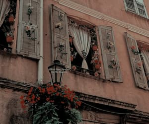 flowers, aesthetic, and architecture image