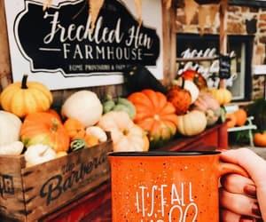 autumn, pumpkin, and coffee image