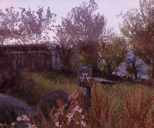 autumn, fallout, and morning image