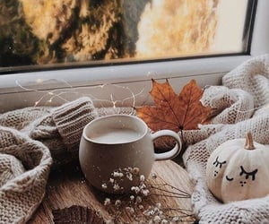 fall, autumn, and aesthetic image