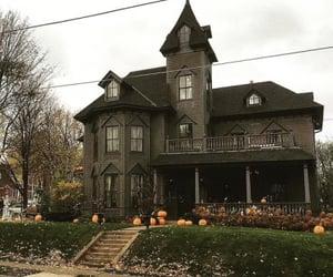 black, fall, and Halloween image