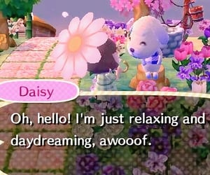 animal crossing, daisy, and soft image