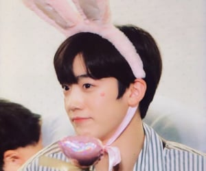 bunny, kpop, and x1 image