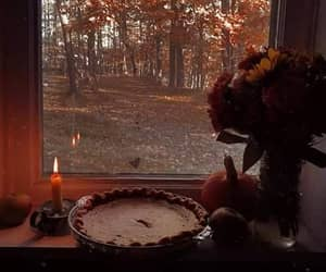 autumn, candle, and forest image