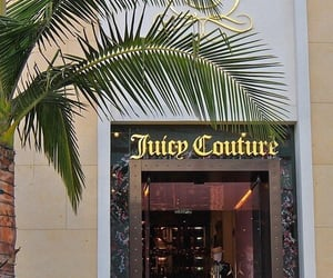 theme, juicy couture, and tropical image