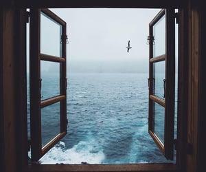 nature, window, and ablak image