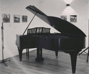 black and white, music, and musician image