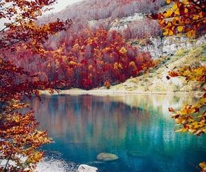 nature, autumn, and lake image