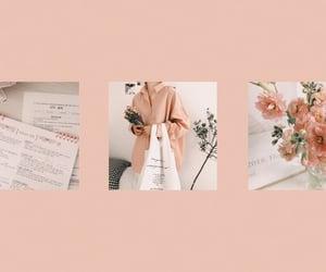 aesthetics, flowers, and header image