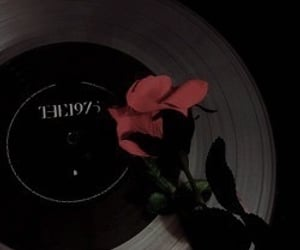 aesthetic, the 1975, and grunge image