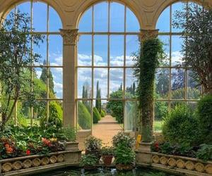 aesthetic, botanical, and luxury image