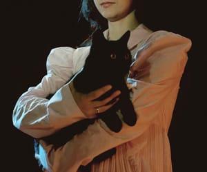 animals, black cat, and dark image