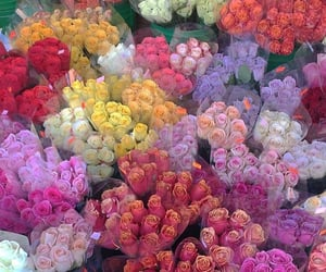 florist, flowers, and flower stand image