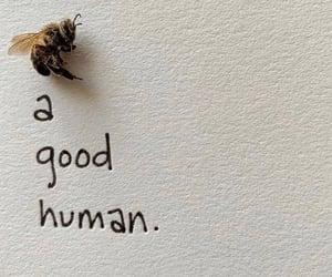 focus, good, and human image