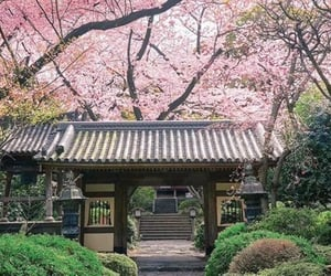 architecture, culture, and japan image