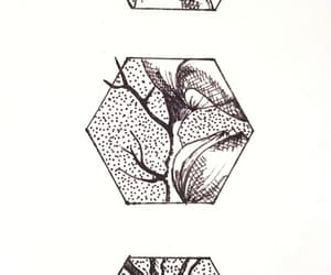 arbol, drawing, and tree image