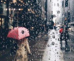 rain, fall, and umbrella image