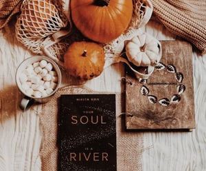 aesthetic, whitherevolution, and autumn image