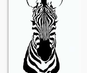 animals, black stripes, and wild animals image