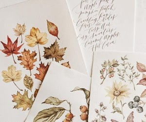 autumn, flowers, and drawing image