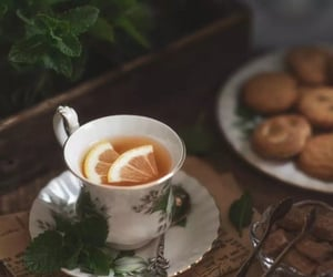 mint, sugar, and teatime image