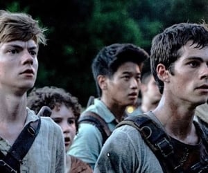 movie and the maze runner image