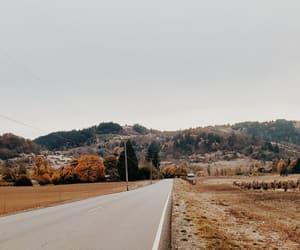 autumn, walks, and nature image