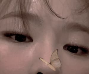seulgi, butterfly, and edit image