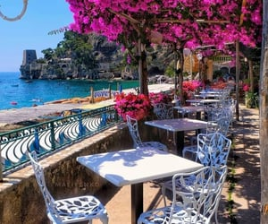 cafe, place to visit, and flowerslovers image