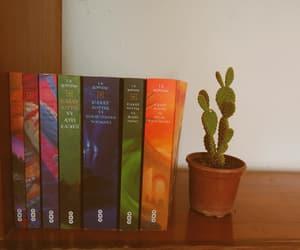 books, cactus, and hogwarts image
