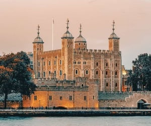 wandering, crown jewels, and that's a trip image