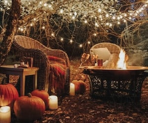 autumn, cozy, and pumpkin image