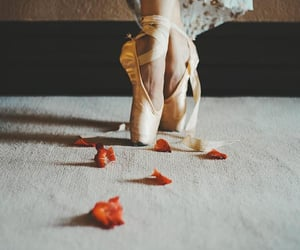 ballet, fashion, and petals image