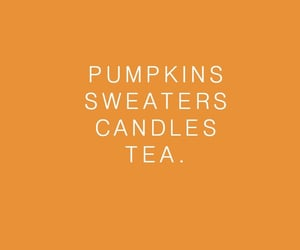 fall, sweater, and tea image