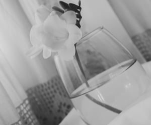black and white, life, and myphoto image