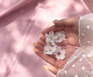 aesthetic, flowers, and hands image