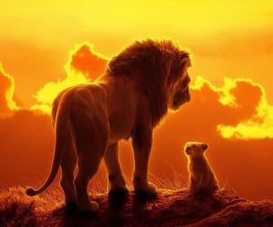 lion and disney image
