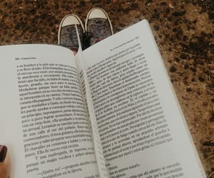aesthetic, books, and converse image