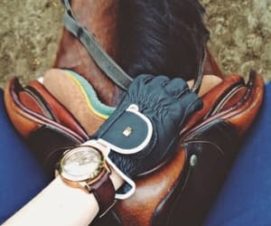 aesthetic, gucci, and horseriding image