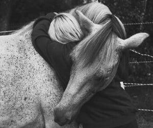 aesthetic, horseriding, and hug image