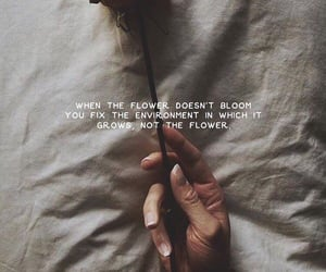 blooming image