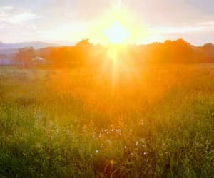 background, meadow, and sky image