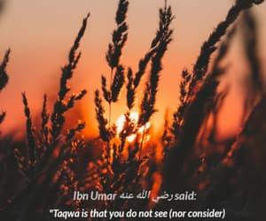 humble, sayings, and islamic reminder image