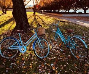 autumn, Bike ride, and blue image